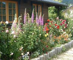 セルフビルドで建てたログハウスの庭